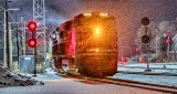 CP 8912 In Snowfall P1370270-6