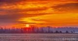 Clouded Sunrise P1370586-92