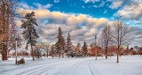 Snowy Confederation Drive P1040954-6