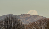The Worm Moon Rising