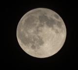 The Thunder Moon