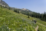 On the Buckskin Ridge Trail