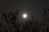 A cloudy Pre-Super Moon rise
