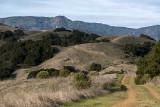 Bald Peaks Trail