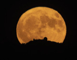 The Harvest Moon and Lick Observatory