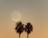 Waning Crescent Moon Rising