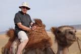 Moi, sur ce chameau