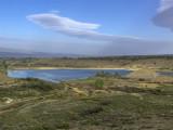 Hallenbeck_Reservoir_Audubon_Spring_Count.jpg