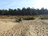 Hoog Buurlose Heide