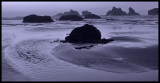 Ocean Rivulet