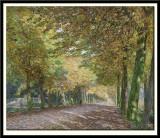 Sunny Lane, 1903