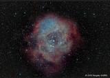 Rosette Nebula NGC 2244 (a.k.a. Caldwell 49, SH 2-275, and CTB 21)