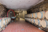 Waiting for the 2017 Vintage