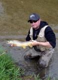 BrownTrout119.jpg