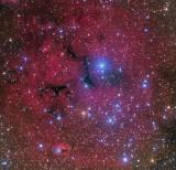 Gum 14  Nebula