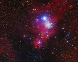 The Cone Nebula and Fox Fur Nebula