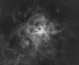 Tarantula Nebula in Ha