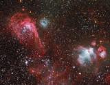 NGC2014  Nebula in the Large Magellanic Cloud