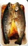 Nature morte (trout)