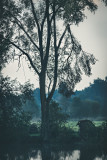Landschaft.f_170828_0877.jpg