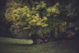 Landschaft.f_171007_1656.jpg