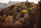 Landschaft.f_170928_1195.jpg