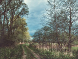 Landschaft.f_100501_0714.jpg