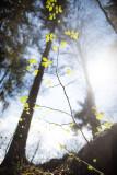 Landschaft.f_180417_2659.jpg