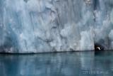 GlaciarPetrel.jpg