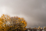 18th October 2017  Autumn showers