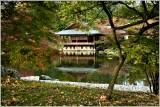 Japanse tuin Hasselt 2017