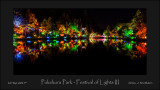 Pukekura Park - Festival of Lights III