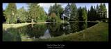 Pond_4832-40p_FPO.jpg