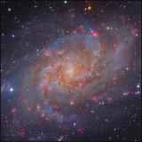 Messier 33 closeup