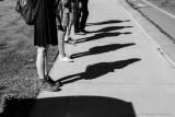 Bus Stop Shadows