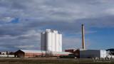 The Sugar Factory