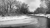 Winter Morning on the Poudre River