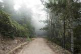 SFBA hikes