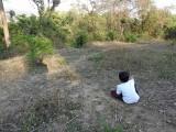 Favorite Dehradun birdwatching spot