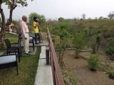 With Nanu, birdwatching in Dehradun