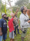 'look, see those Papuan Frogmouths?'
