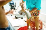 Weighing Shark