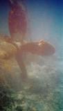 Wreck Propeller