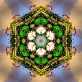 Genesis_1_by_Artist_Nancy_Good.jpg