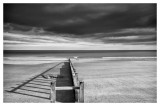 Dawlish Warren  17_d90_DSC_0029