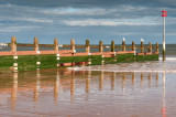 Dawlish Warren  17_d90_DSC_0038