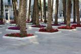 jerusalem__new_city