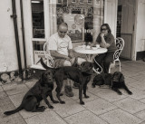 Bedale couple with dogs