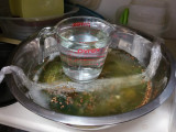 Pickles in Progress