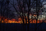 DSC01999 Gorgeous Sunset This Evening